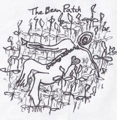 The Bean Patch